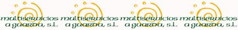 www.multiserviciosaguarda.com